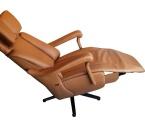 Möbel: Ruhe- und TV-Sessel 230