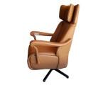 Möbel: Ruhe- und TV-Sessel 222