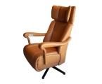 Möbel: Ruhe- und TV-Sessel 226