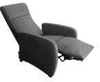 Möbel: Ruhe- und TV-Sessel 231